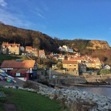 FOSSIL HUNTING AT RUNSWICK BAY