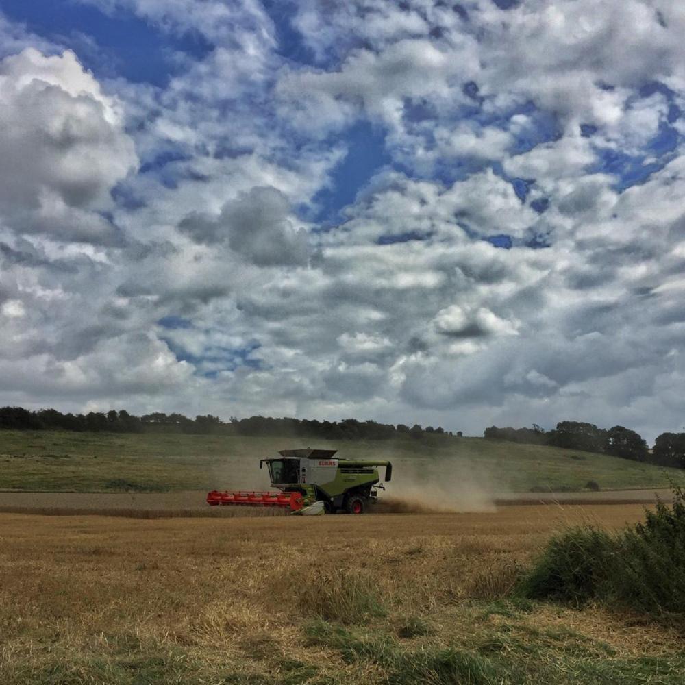 Splodz Blogz   Harvest Time in Lincolnshire