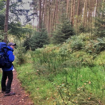 ADVENTURE PLANNING WORRIES AND TIPS TO HELP