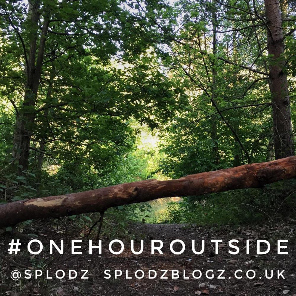 Splodz Blogz | One Hour Outside #OneHourOutside