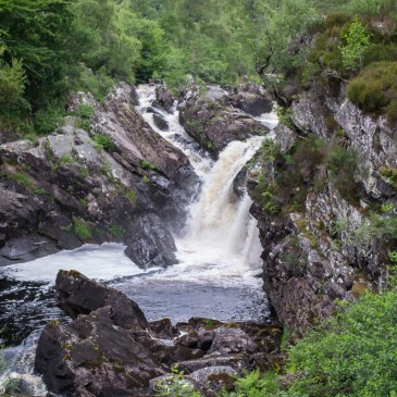 ONE HOUR OUTSIDE AT ROGIE FALLS