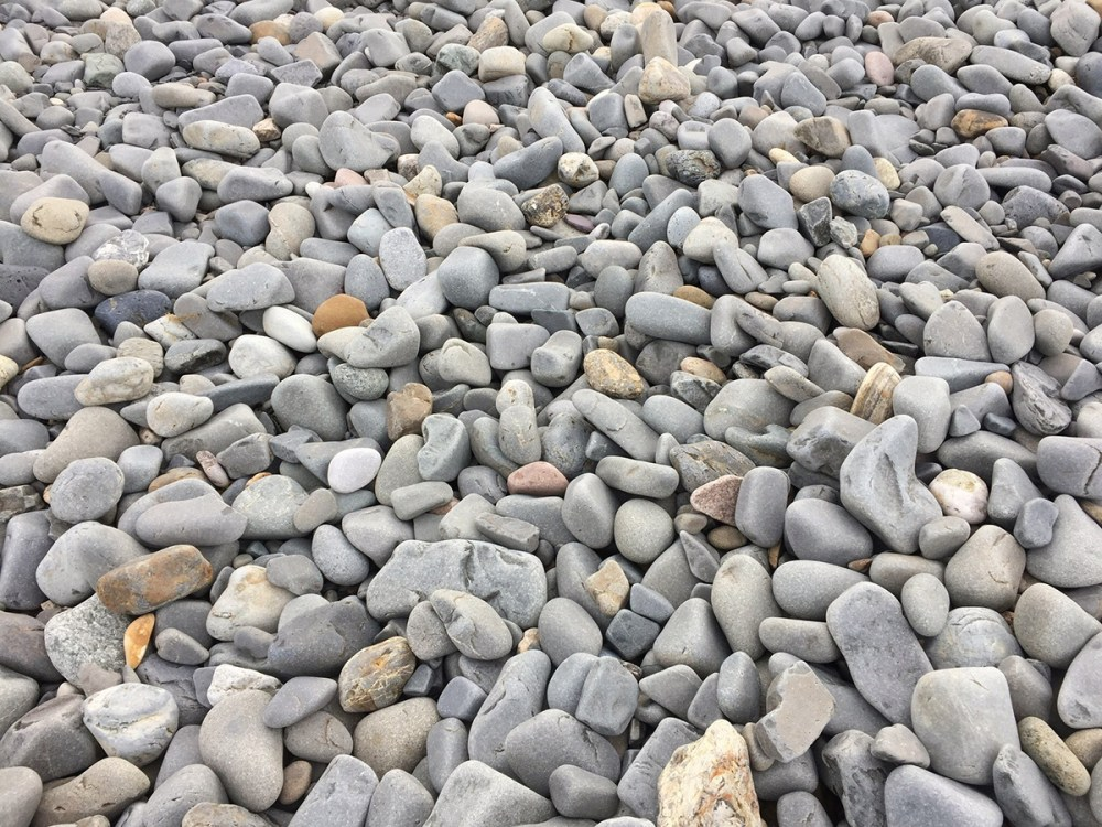 Splodz Blogz   Pebble Beach