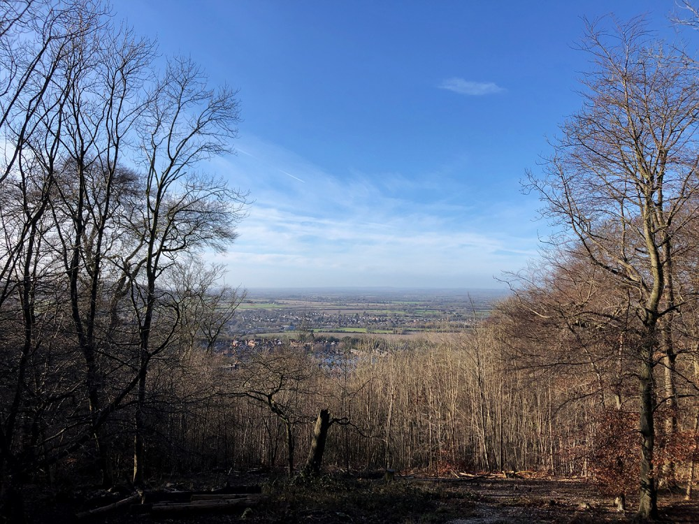 Splodz Blogz | View from Wendover Woods, the Chilterns