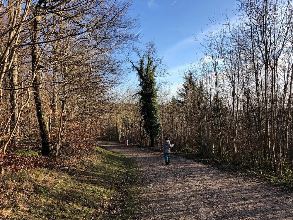 Splodz Blogz | Kids running in Wendover Woods