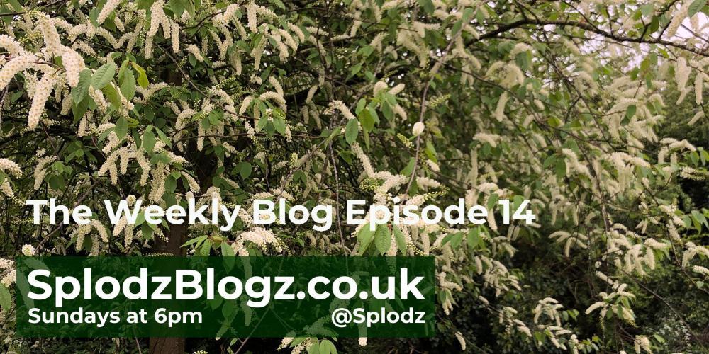 Splodz Blogz | The Weekly Blog Episode 14