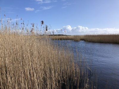 Splodz Blogz | Newport Wetlands