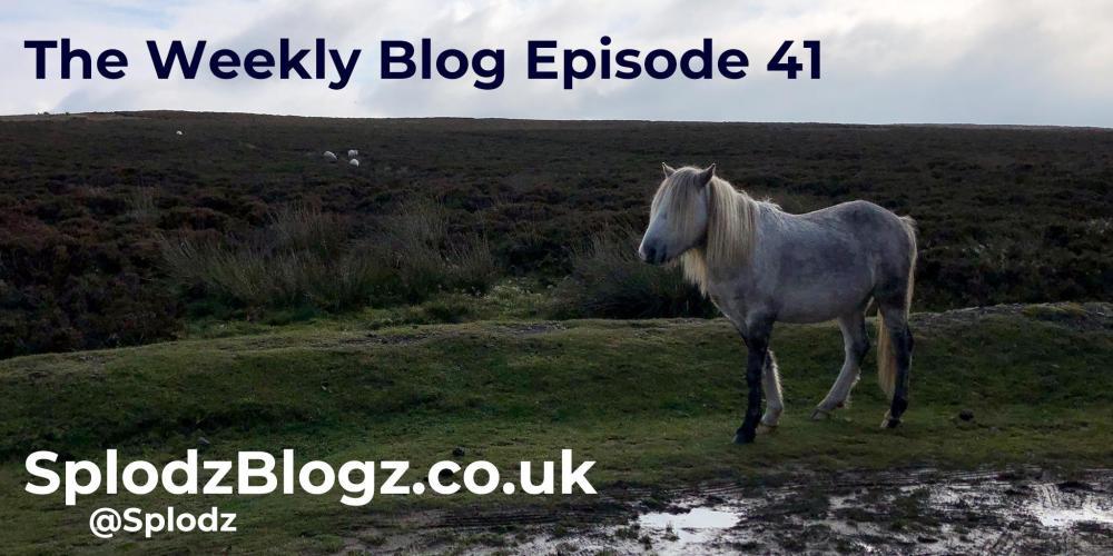 Splodz Blogz | The Weekly Blog Episode 41
