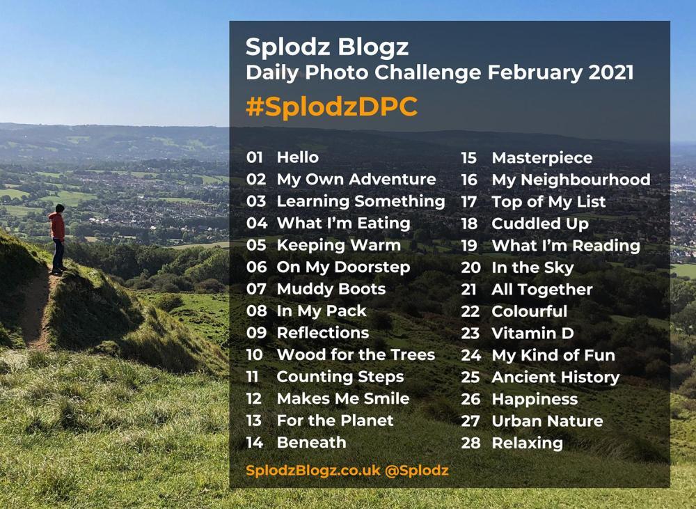 Splodz Blogz Daily Photo Challenge February 2021