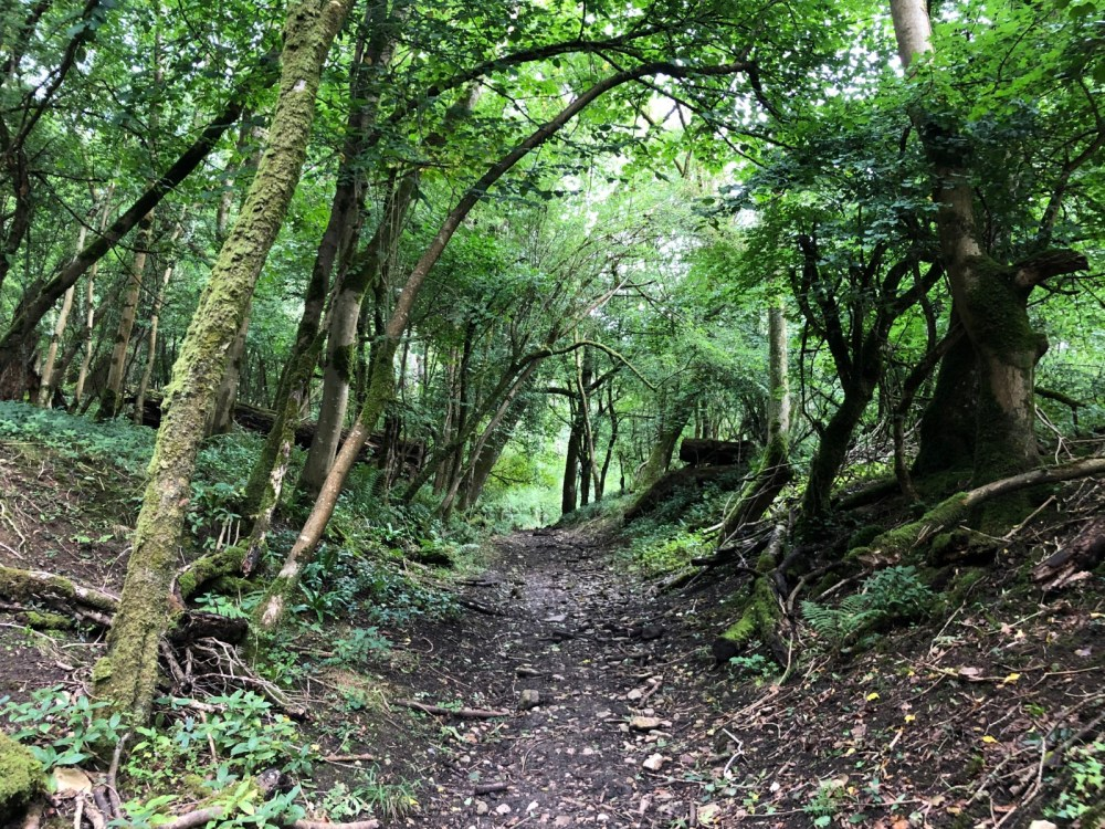 Splodz Blogz | Short Walks in the Cotswolds - Sapperton