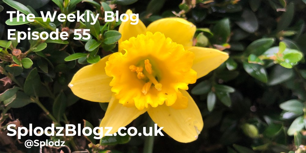 Splodz Blogz | The Weekly Blog Episode 55