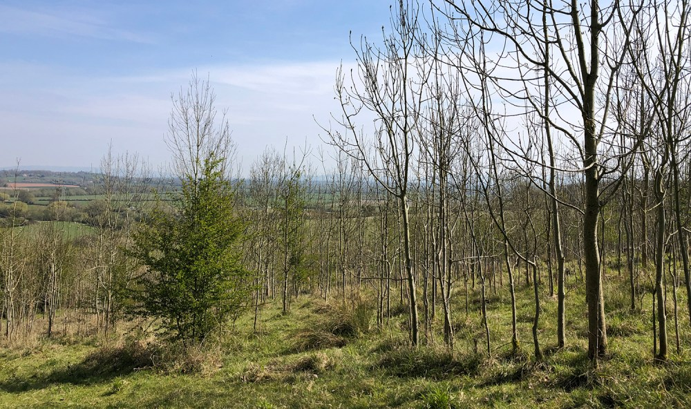 Splodz Blogz | View from Sandhurst Hill