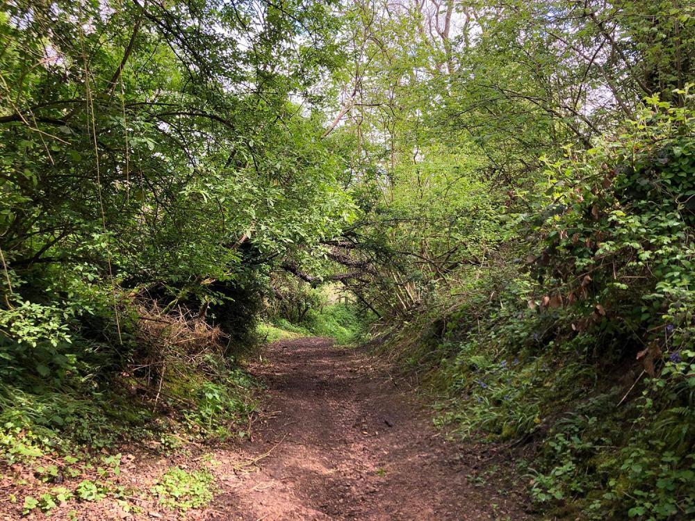 Splodz Blogz | Footpath on Chosen Hill Churchdown