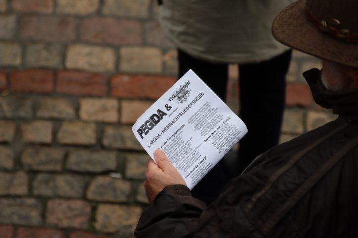 Abgestürzte Brieftauben spielten gegen Pegida in Dresden