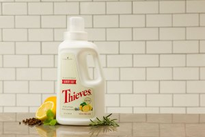 Thieves Laundry Soap