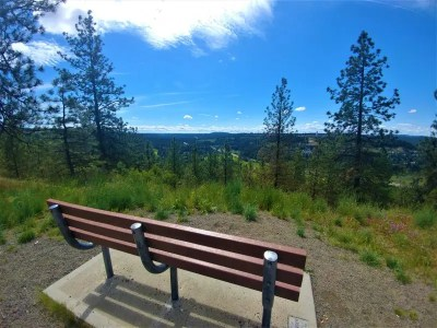 The View from High Drive Spokane