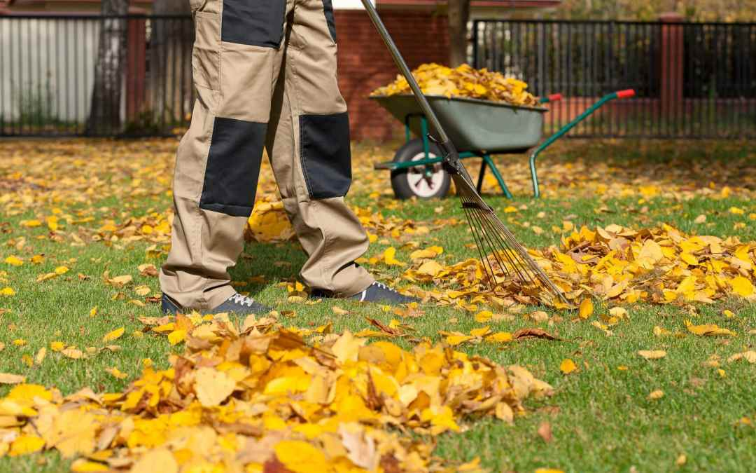 How To Find The Best Lawn Care Company In Spokane Valley, WA