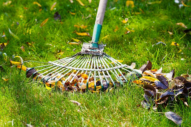 Spokane's Finest Lawns Fall Cleanup