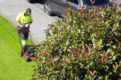 Grass Cutting Spokane's Finest Lawns