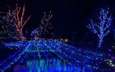 LED Vs. Solar Christmas Lights