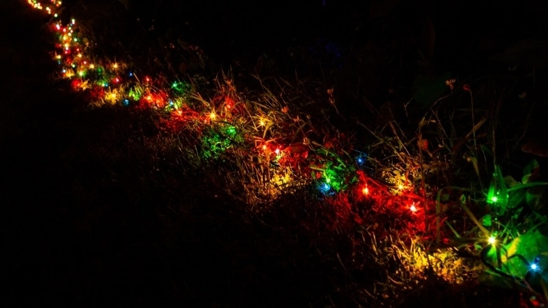 A string of multicolored solar Christmas lights
