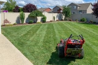 A large commercial mower sitting in a freshly mowed back yard