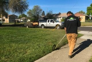 Lawn Trimming Service