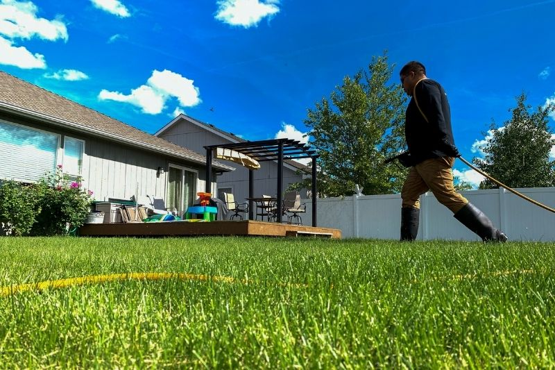Fast Green Up For Spokane County Lawns