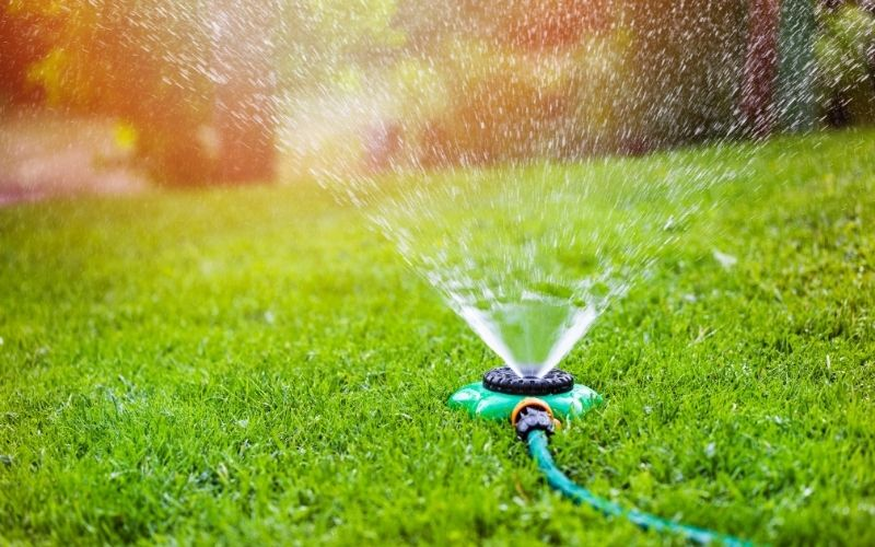 Best time to water grass in morning