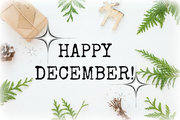 DECEMBER FOCUS | THIS YEAR HAS FLOWN BY!