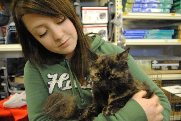 PHOTO BY ALYSHA MILLER Janina Gores, a 19-year-old Guelph resident, travelled to PetSmart to look into adopting a cat at the Adopt-A-Thon.