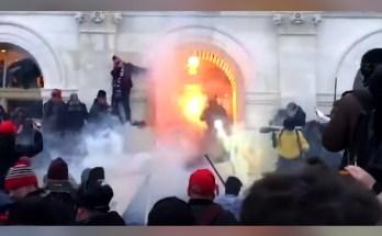 Trump mob