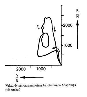 Vektordynamogramm eines beidbeinigen Absprungs mit Anlauf