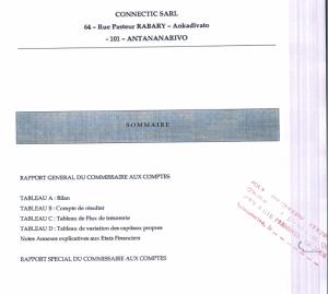 premiere-page-du-rapport-du-commissaire-aux-comptes-pour-lexercice-clos-qu-31-decembre-2011