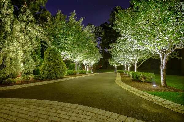 elegant landscaping stone and lighting