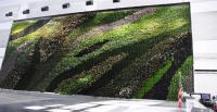 Green Roofs and Green Walls - Sponzilli Landscape Group
