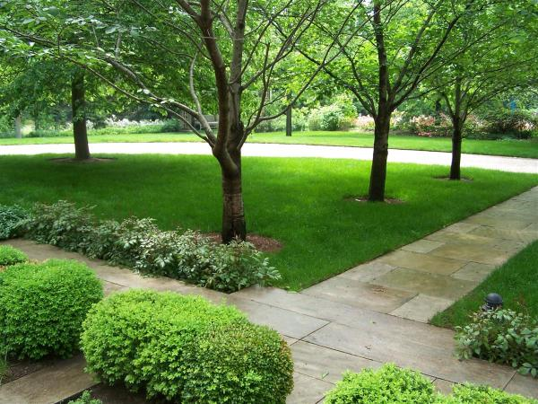 organic lawn care - sponzilli landscape