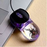 spider mouse
