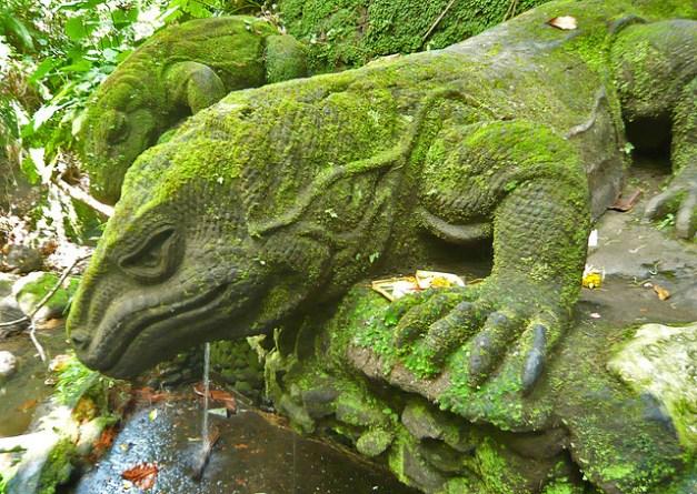 Komoda dragon by Peter