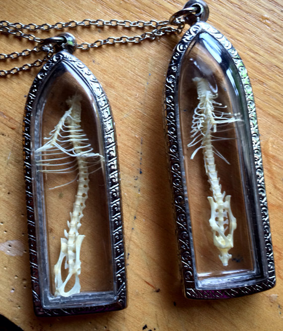 Cruelty-free anatomical jewelry by Afterlife Artwork