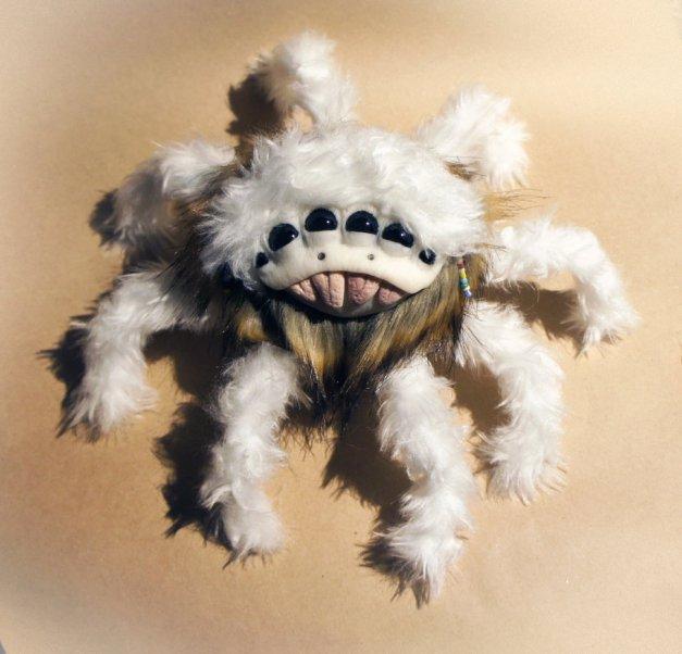 Spider Sinchyrinchium