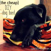 DIY Cheap Dog Bed