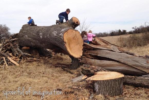 climbing_a_dead_tree