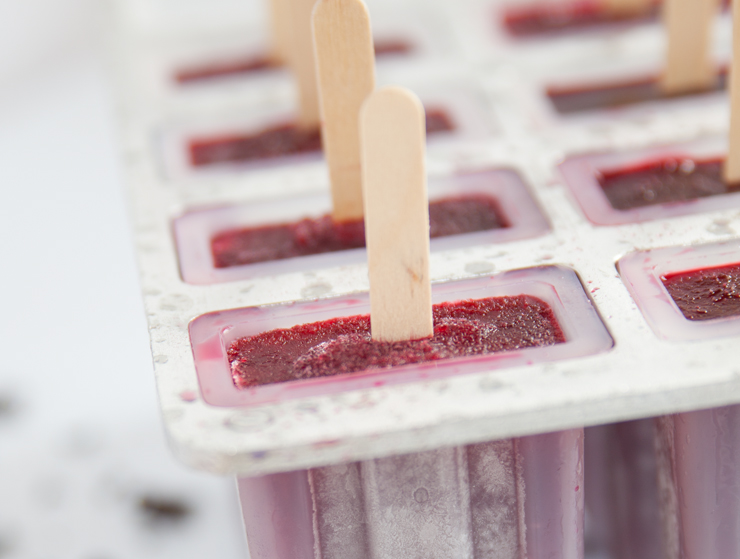 Hibiscus popsicle recipe