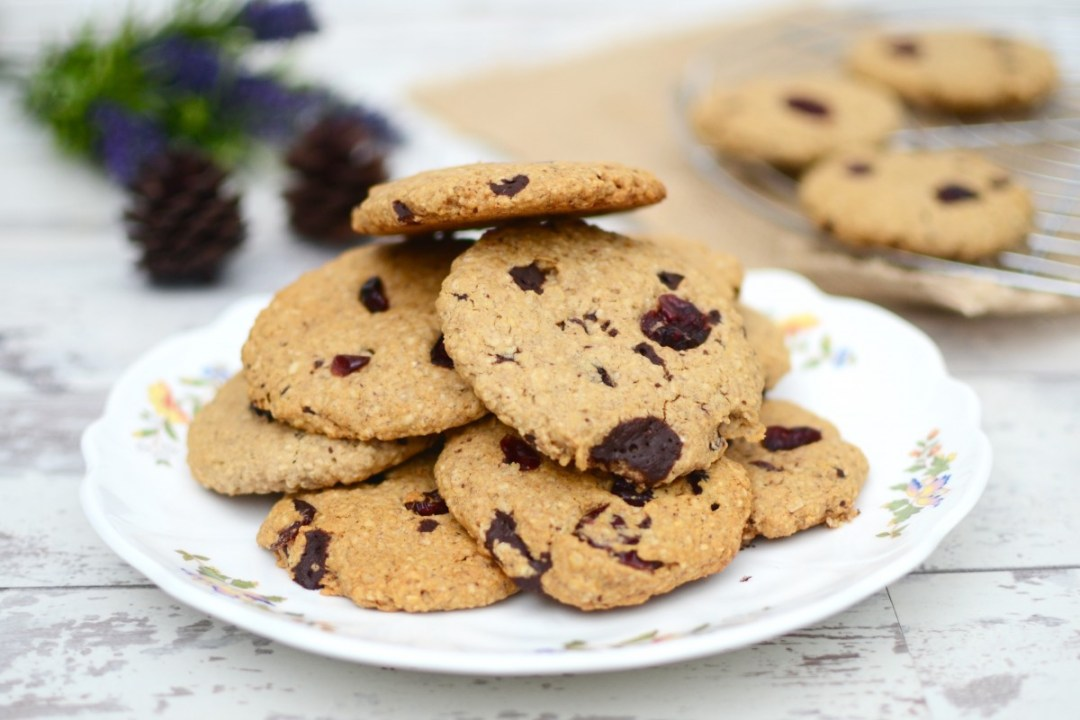 Vegan Cranberry & Dark Chocolate Chip Cookies