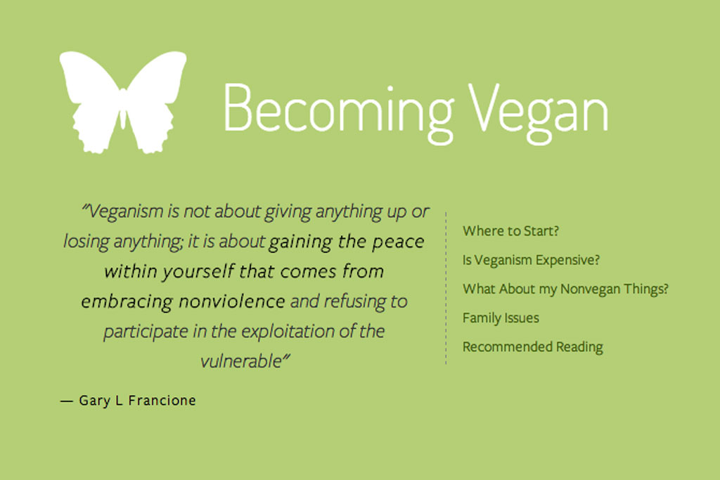 A Beginner's Guide to Veganism
