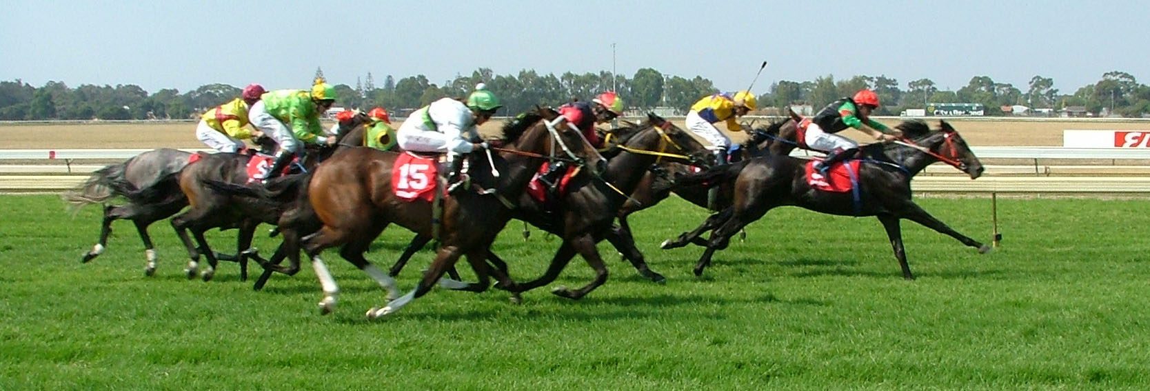 horse racing betting tips last samuri can put rivals sword 1