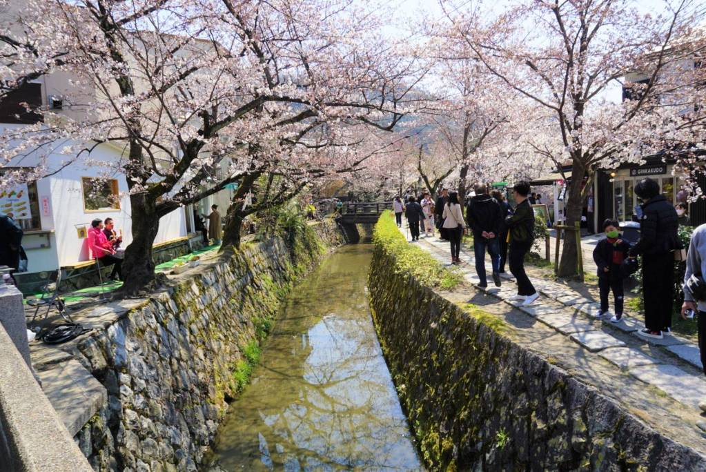 Half day along the Philosopher's Path in Kyoto, Japan Review