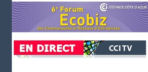 ecobizendirect_large