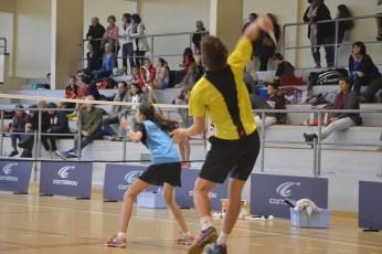 badminton-2jpg