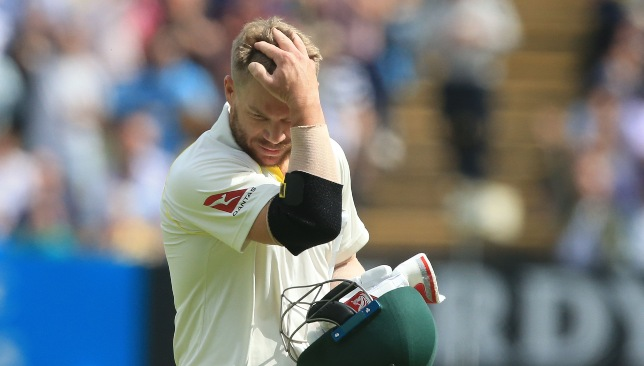 David Warner had a miserable Ashes series.